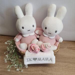 Kraamcadeau tweeling meisjes Nijntje